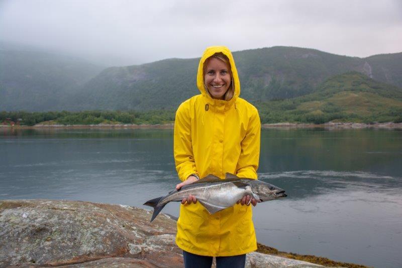 Ribe Potujoči brlog