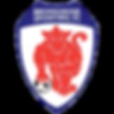 Bromsgrove Sporting.png