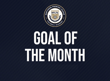 GOAL OF THE MONTH - RECAP