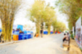 DSC05094.jpg