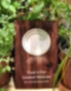 book cover herb 1.jpg