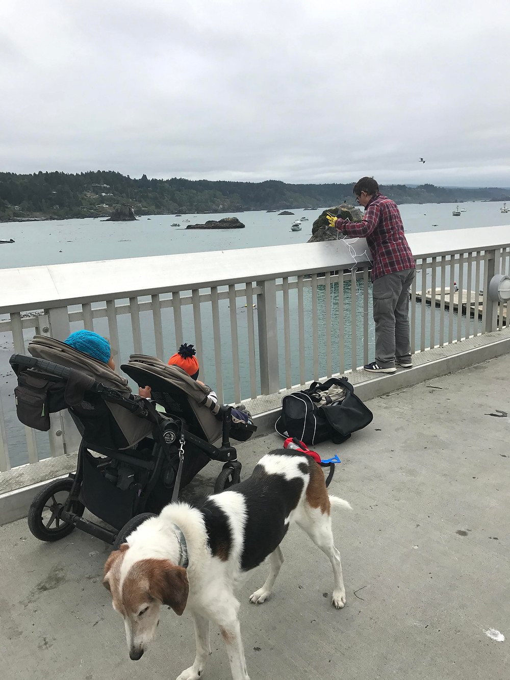 Crabbing at the pier in Trinidad, CA