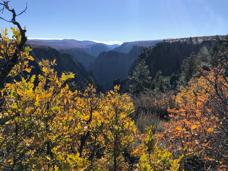 Trip Report: Black Canyon of the Gunnison National Park
