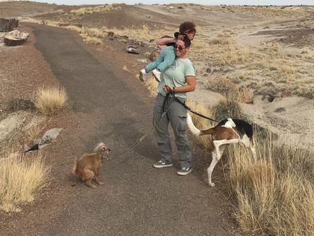 Trip Report: Arizona