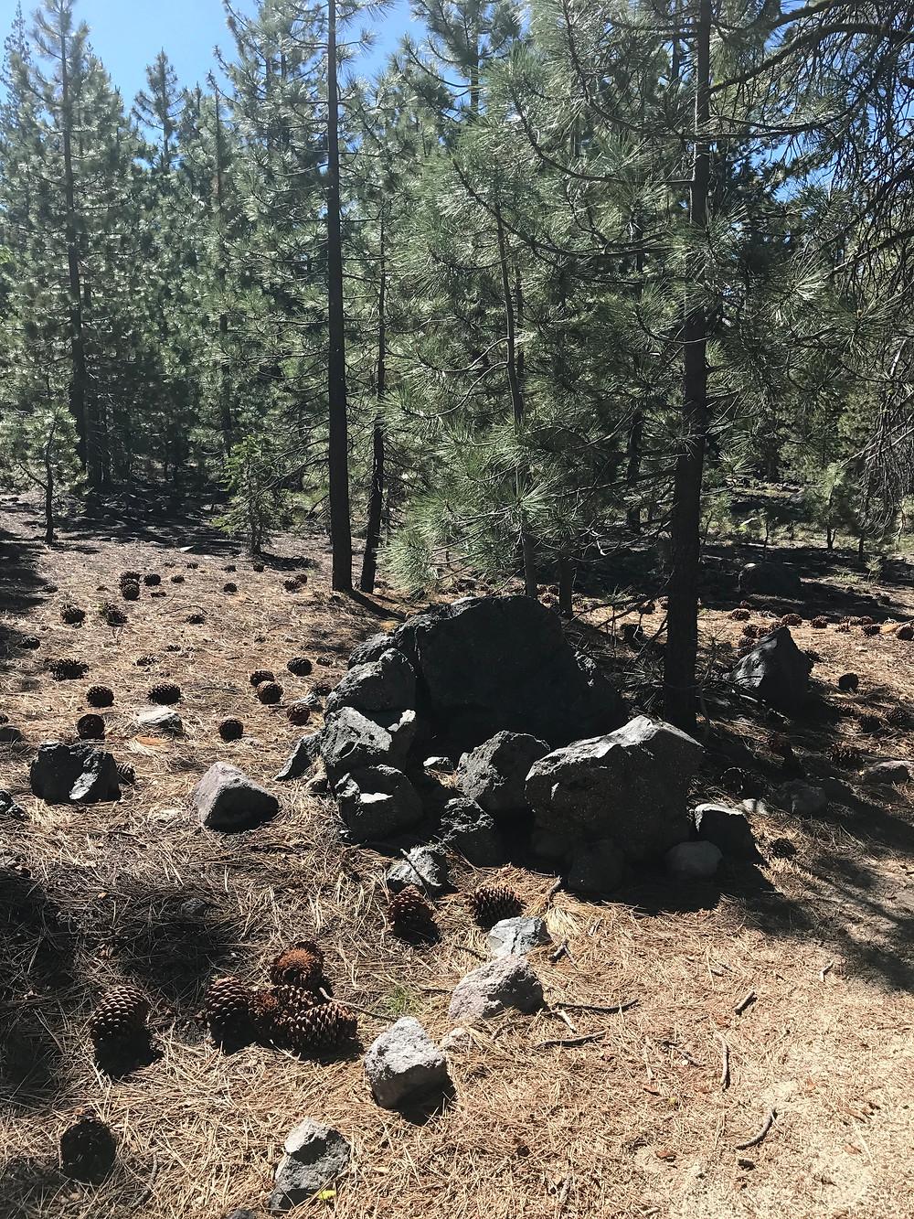 Devastated Area Trail, Lassen Volcanic National Park