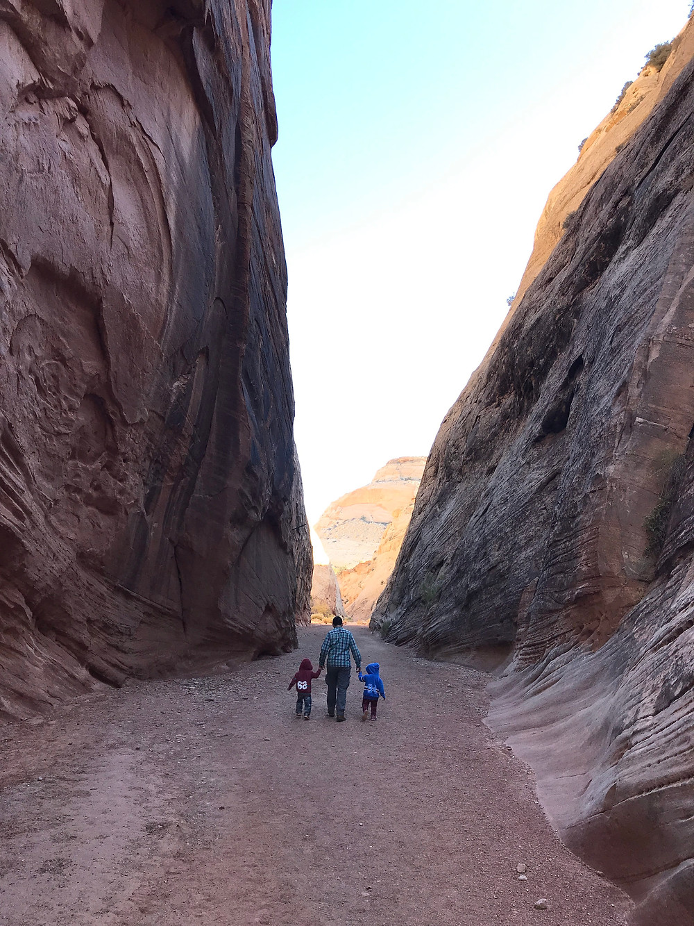 Capitol Gorge Trail, Capitol Reef National Park