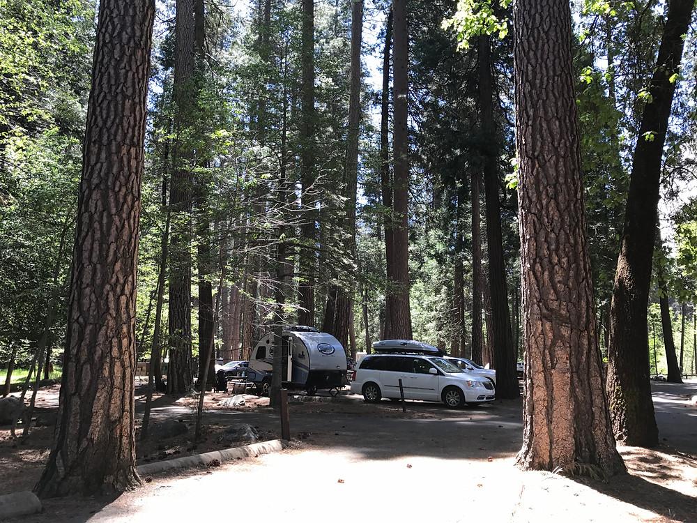 Site 503, North Pines Campground, Yosemite National Park