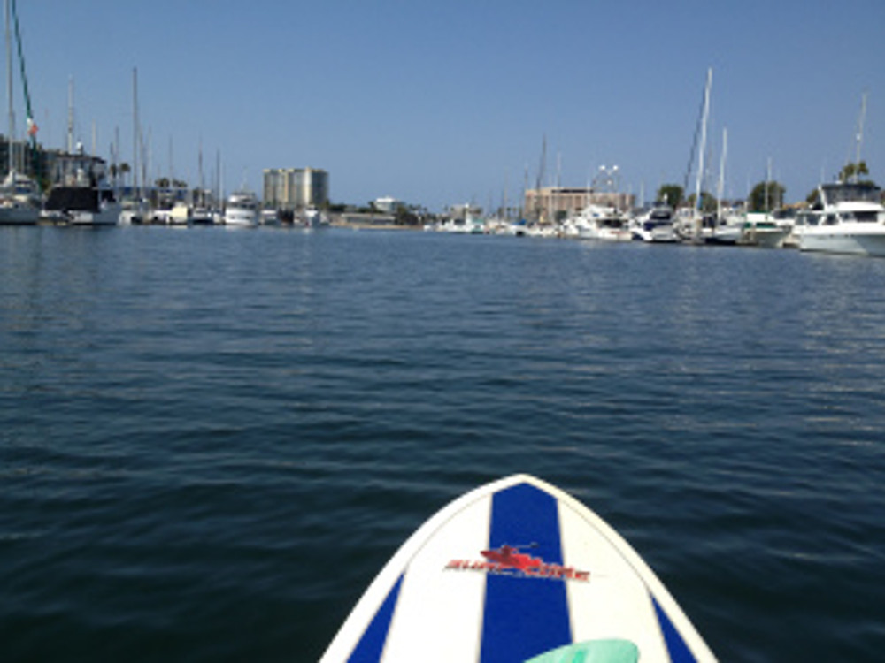 paddleboarding-in-the-marina