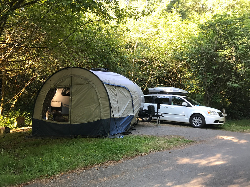 Site 12 at Elk Prairie Campground, Redwoods State and National Parks