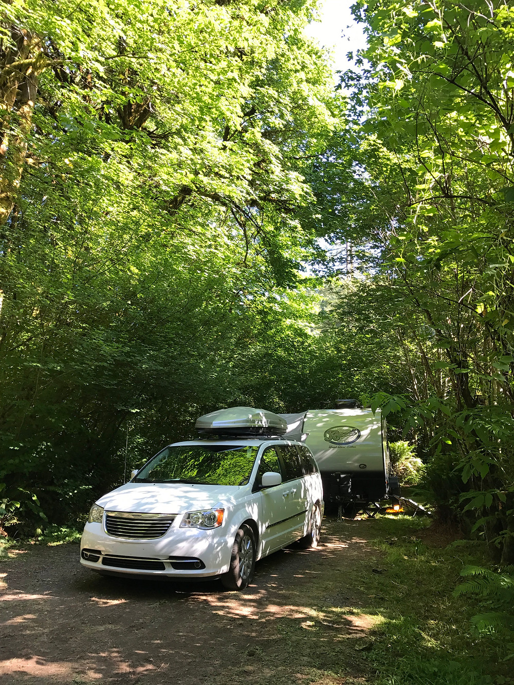 Site 124 at Mill Creek Campground, Redwoods State and National Parks
