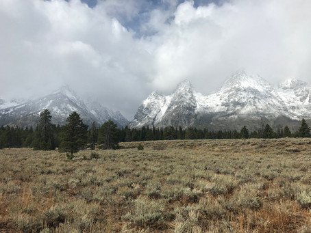 Trip Report: Grand Teton National Park and the Buffalo KOA