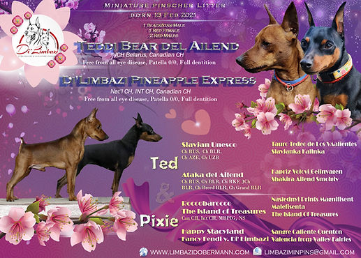 Тед&Pixie 2021.jpg