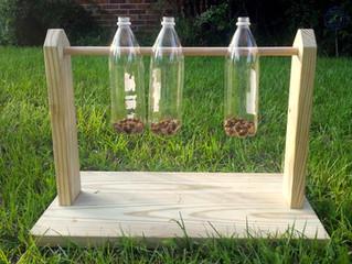 Bottle Spinner