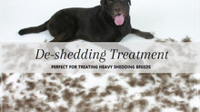 DE-SHEDDING TREATMENT
