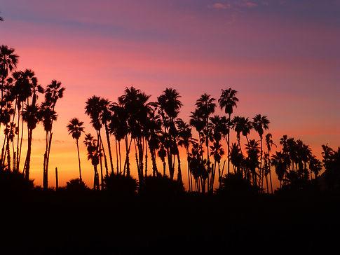 Las Palmas Beach Sunset near Casa Bentley Hotel, Todos Santos, Baja, Mexico