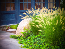 Lawler-Boulder-Grass-and-Ivy-2-2