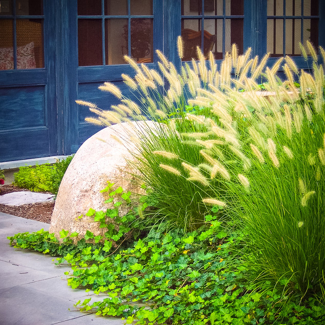 Lawler-Boulder-Grass-and-Ivy-2-2.jpg