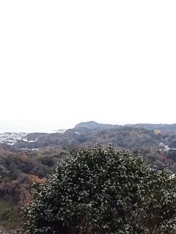 秋深し と 上野動物園 最新ニュース!