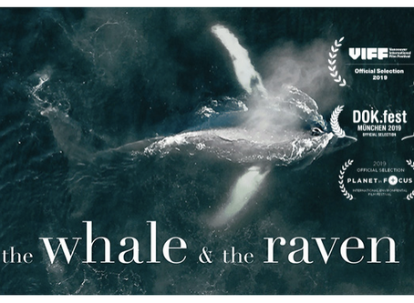 The Whale and The Raven - Victoria Premiere