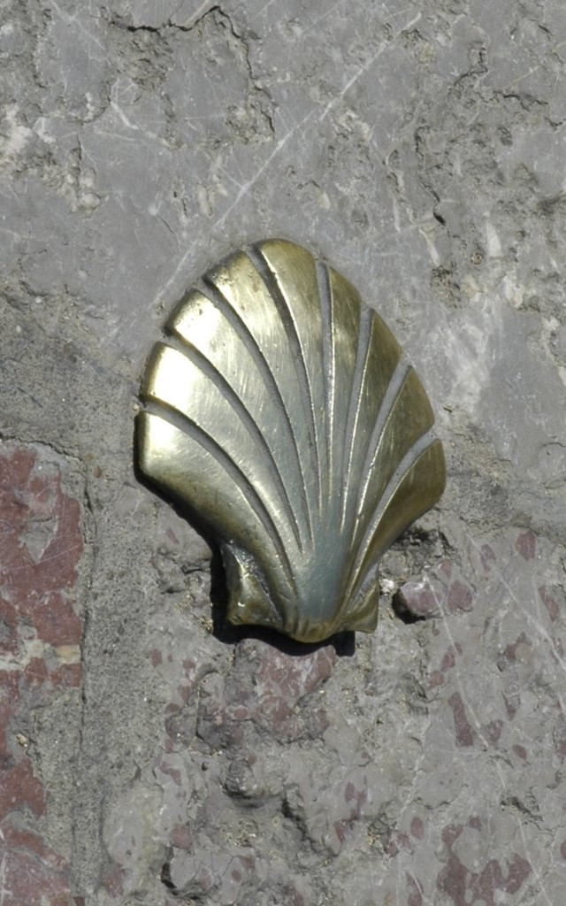 The Shell from the Camino