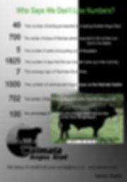 2013 Cattleman Ad.jpg