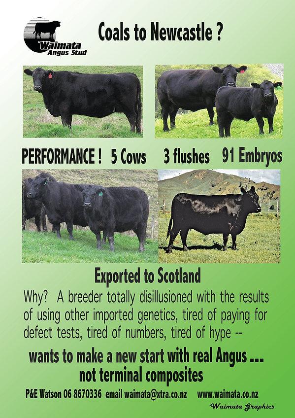 Cattleman Ad.jpg