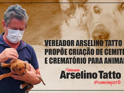 Cemitério municipal de animais é proposta do vereador Arselino Tatto
