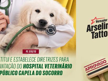 Hospital Veterinário Público na Capela do Socorro é aprovado