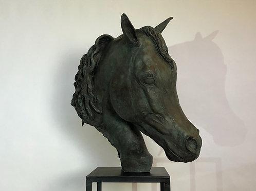 Arab Stallion Head 2018 Bronze Sculpture