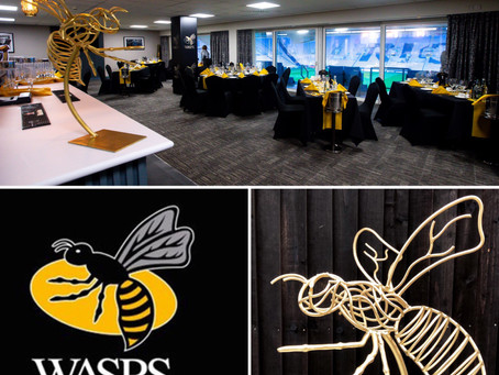 THE PERFECT CHRISTMAS GIFT FOR YOUR WASPS FANS!!
