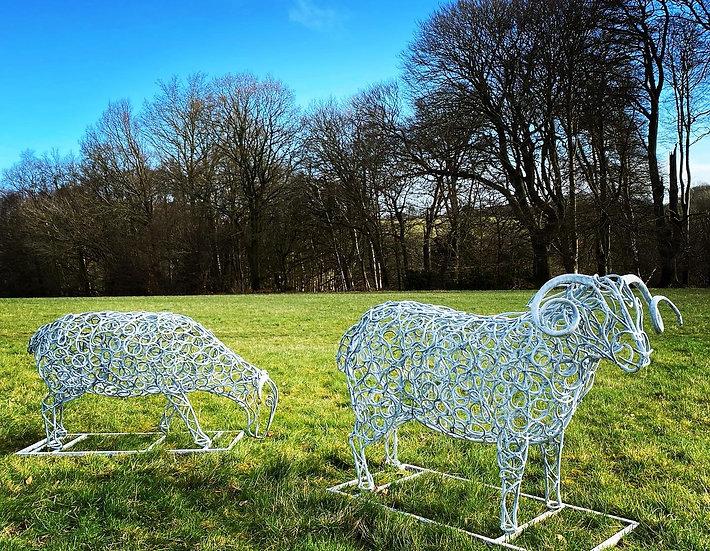 Blackface Sheep Sculpture Ram & Ewe
