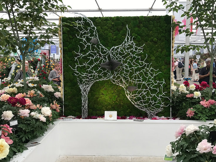 RHS Chelsea - Love with the Mind
