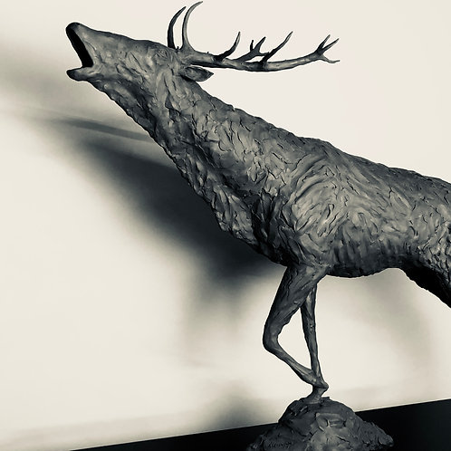 Bellowing Red Stag 2018 Bronze Sculpture