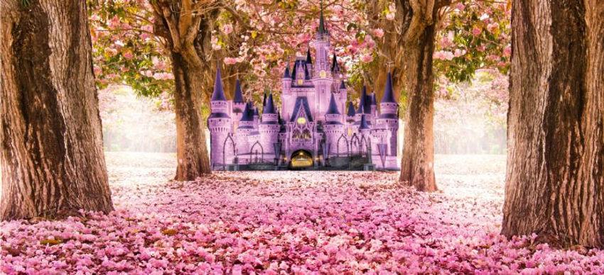 floresta castelo.jpg