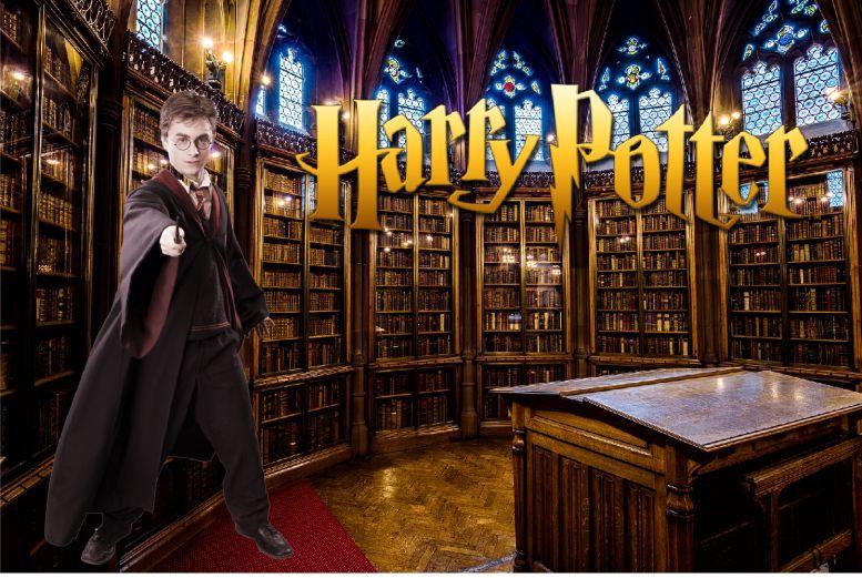 harry potter biblioteca.jpg