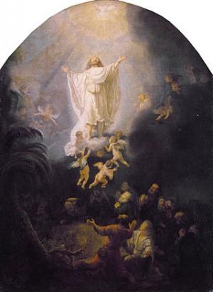Rembrandt_van_Rijn_192_resized.jpg