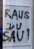Florian Süssmayer, Raus du Sau!