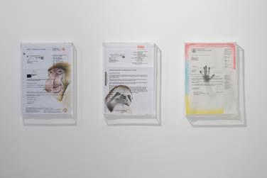 """Alex Wissel: """"Aktenzeichen 2454936"""", """"In der Hektik des Alltags"""" and """"Lesenummer 30352181"""", all 2019"""