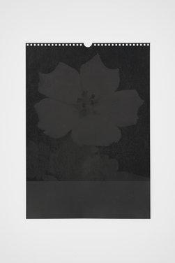 Willem Oorebeek: Flower, 2009