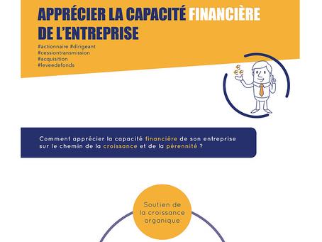 Apprécier la capacité financière de l'entreprise
