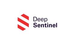 Deep Sentinel Remote Guarding Service 24/7 Monitoring