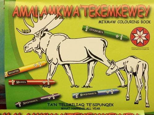 765 Mi'kmaw Coloring Book