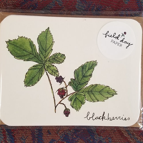 "1020 ""Blackberries"" Blank Note Cards - Set of 4"