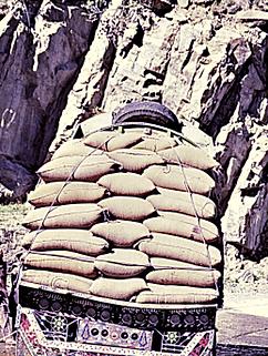 Pakistan3011.tif