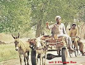 Pakistan2271.jpg