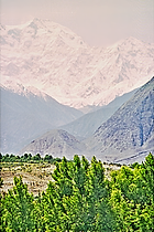 Pakistan3511.tif