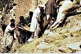 Pakistan3841.tif