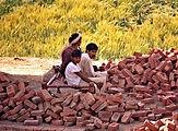 Pakistan1751.jpg