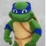 Ninja Turtle Mascot