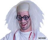 Professor Wig